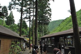 兵庫県三田市 丹波の松茸山に囲まれた清流沿いにある癒しの空間 こにし観光園